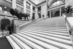 An image of the interior of the Manitoba Legislative Building.  Completed in Winnipeg in 1920, the stone Classical Revival structure was designed by Frank Worthington Simon and Henry Boddington III.  This image © Capitolshots Photography/TwoFiftyFour Photos, LLC, ALL RIGHTS RESERVED.