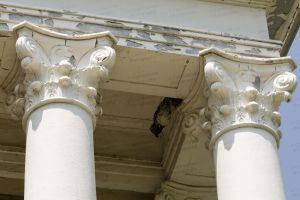 Love-County-Courthouse-01018W.jpg