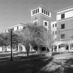 Volusia-County-Courthouse-01004W.jpg