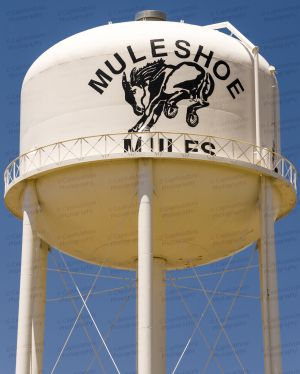 Muleshoe-Water-Tower-01002W.jpg