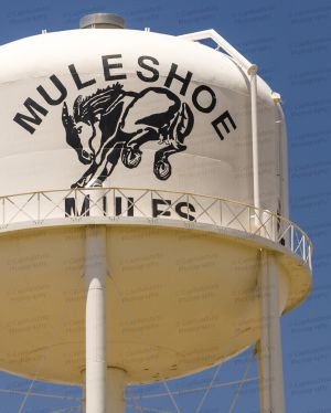 Muleshoe-Water-Tower-01003W.jpg