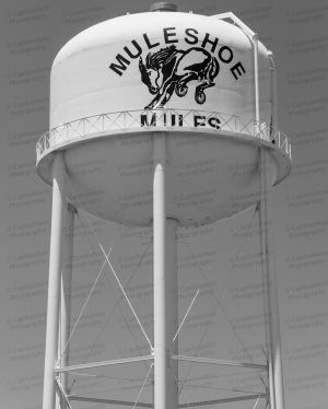 Muleshoe-Water-Tower-01004W.jpg