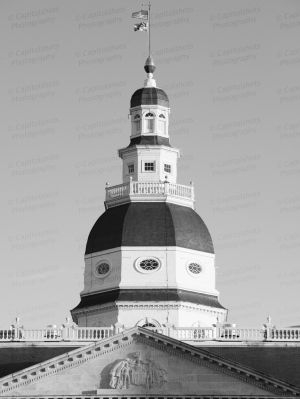Maryland-State-House-1051.jpg
