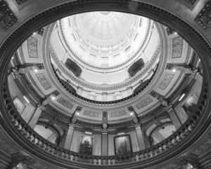Michigan-State-Capitol-1017.jpg