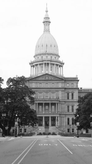 Michigan-State-Capitol-1060.jpg