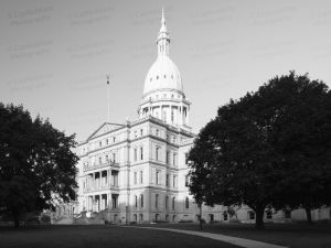 Michigan-State-Capitol-1102.jpg