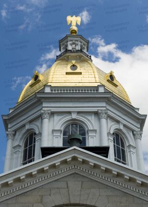 New-Hampshire-State-House-1002.jpg