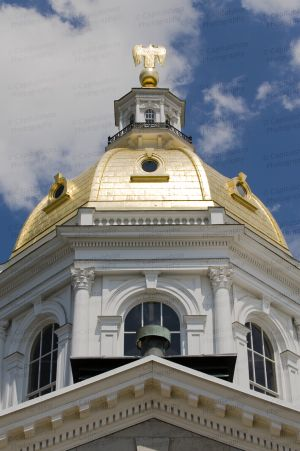 New-Hampshire-State-House-1005.jpg