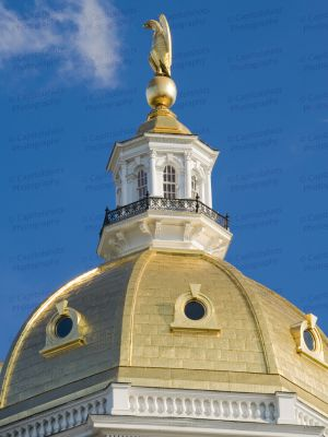 New-Hampshire-State-House-1029.jpg