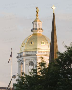 New-Hampshire-State-House-1041.jpg