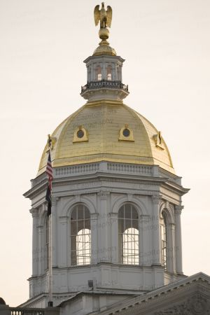 New-Hampshire-State-House-1048.jpg
