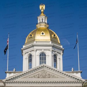 New-Hampshire-State-House-1077.jpg