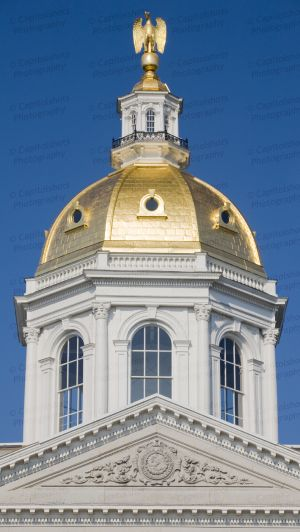 New-Hampshire-State-House-1078.jpg