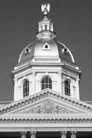 New-Hampshire-State-House-1079.jpg