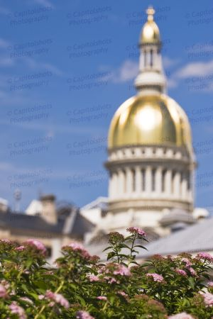 New-Jersey-State-House-1018.jpg