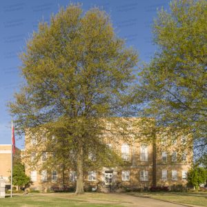 Faulkner-County-Courthouse-01007W.jpg